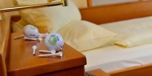 Einzelzimmer Standard mit Talblick und Golferzubehör