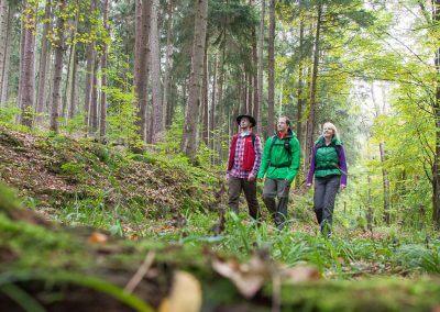 Spessartbogen_Copyright-NaturparkHessischerSpessart_MG_5564