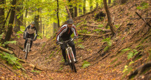Mountainbike Downhill Spessart