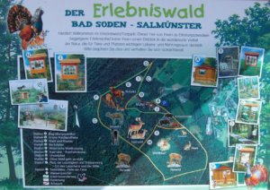 Erlebniswald Bad Soden